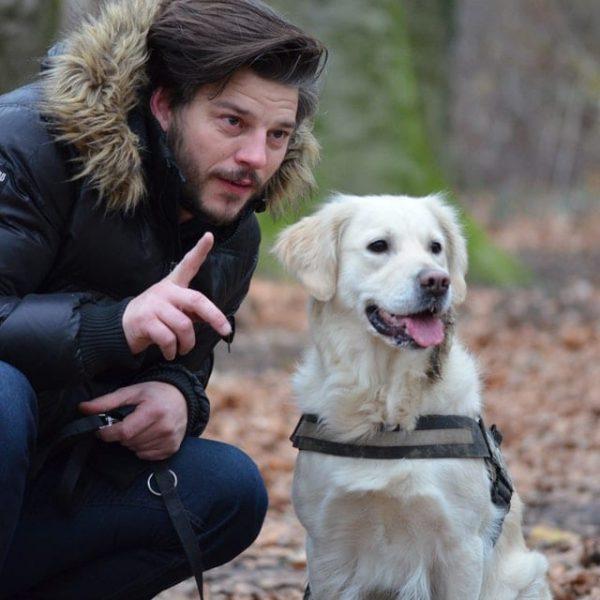 leisure-wildlife-photography-pet-photography-dog-159557